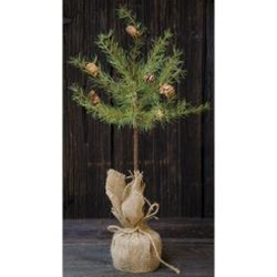 Cypress Topiary Tree, 2 ft.